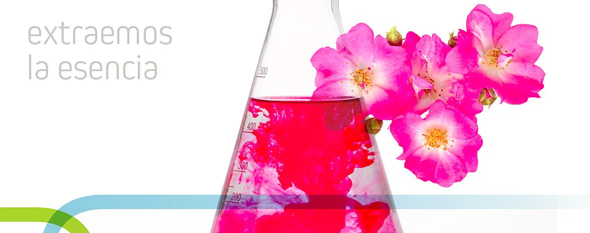 equipo multidisciplinar con experiencia en el sector cosmético