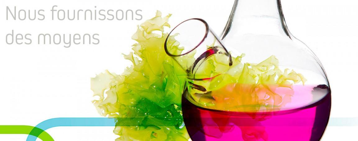 Fabrication de cosmétiques selon les standards de qualité les plus exigeants