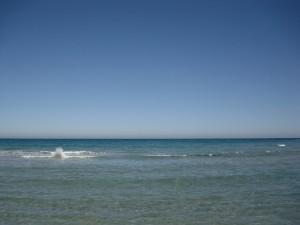 www.posidoniacosmetics.es verano1